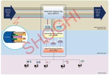 Submarine Cable Interception System Architectural Diagram