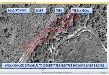 Panchromatic Data to Identify Tree and Tree Shadows, River & Roads